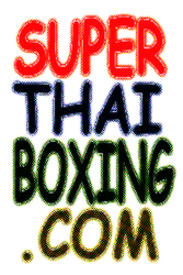 Muay Thai Kick Boxing  - Keep fit,  relieve stress,  have fun